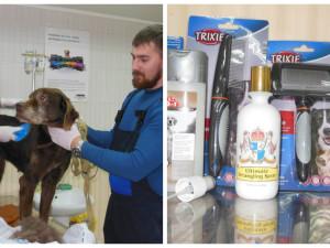 Помощь для «Центра обращения с животными»