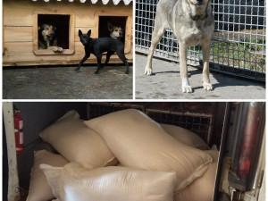 360 кг крупы для «Приюта для животных» пгт.Бородянка